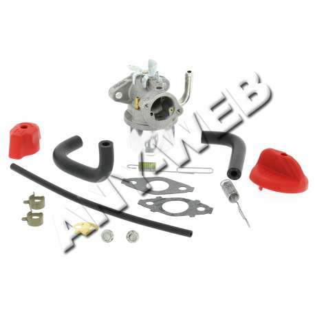 798917 - Carburateur Briggs and Stratton